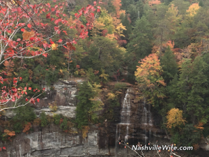 Fall at Fall Creek Falls