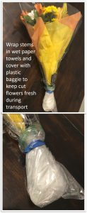 keep flowers from dying in heat